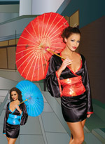 Japanese Geisha Girl Sexy Halloween Costume ~ Red or Blue ~ S-4X